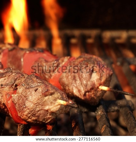 BBQ Kebabs On The Grill Close-up - stock photo