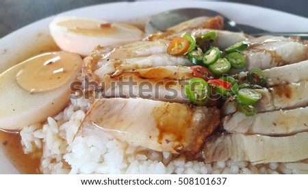 BBQ Pork, Crispy Pork with Rice. (Thai food) Closeup Useful as background for design-works.