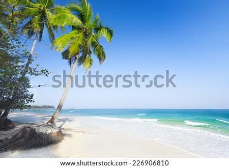 beaautiful beach with coconut palm and sea - stock photo