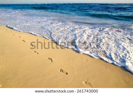 beach and beautiful tropical sea - stock photo