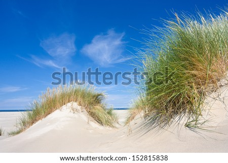 Beach and dunes with Beachgrass - stock photo