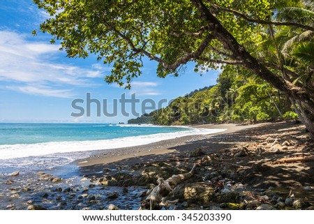Beach and jungle in Corcovado National Parc, Costa Rica - stock photo