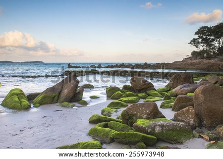 beach and  rock on the beach at Chaweng beach Thailand. - stock photo