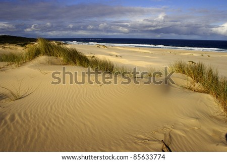 Beach and sand dunes at St. Helen's point in Tasmania Australia - stock photo