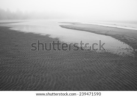 Beach at Pacific Rim National Park. Vancouver. Canada. Foggy - stock photo