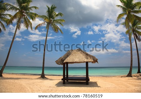 Beach at Punta Cana, Dominican Republic