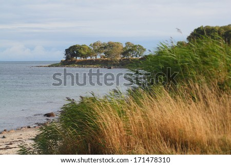 beach at the baltic sea near staberdorf, fehmarn, germany - stock photo
