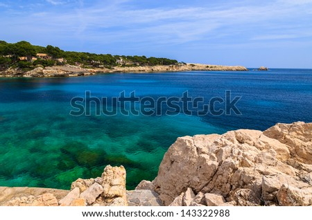 Beach bay azure turquoise sea water hill pine tree, Cala Gat, Majorca island, Spain