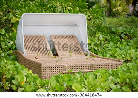 beach bed on white sand among palm trees in full sun - stock photo