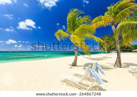 Beach chairs and palm trees at 7 mile beach, Grand Cayman - stock photo