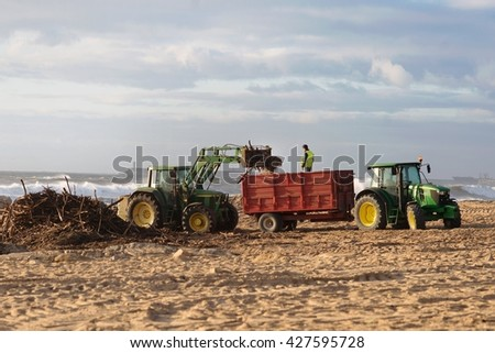 Beach cleaning crew working at sandy beach removing branches - stock photo