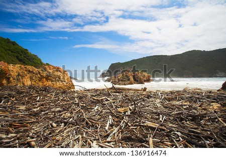 Beach covered in driftwood at the bay opening of The Heads in Knysna, Eastern Cape, South Africa - stock photo