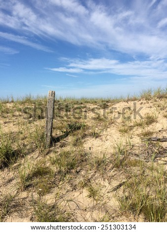 Beach dunes - stock photo