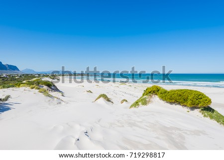 Beach dunes in Bettys Bay, Cape Town, South Africa