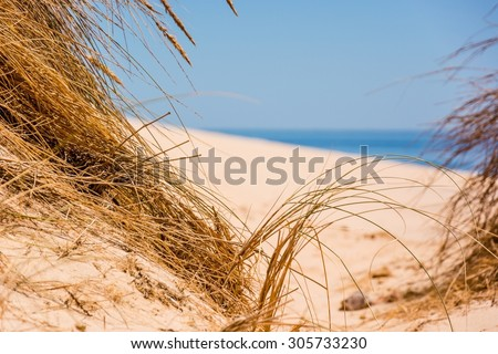 beach feeling - stock photo