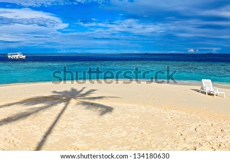 Beach for relax under the shade of a palm tree