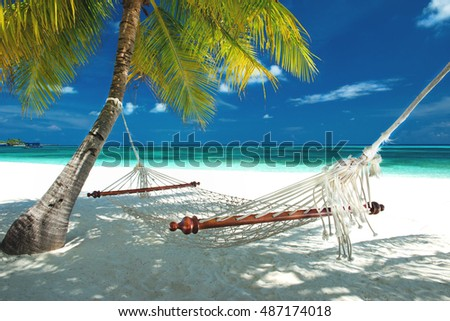 beach hammock hanging on a palm tree on the maldives
