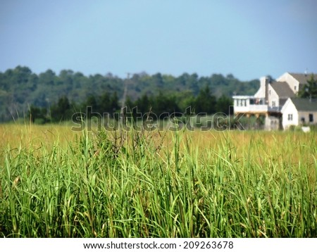 Beach house and sea grass background. - stock photo