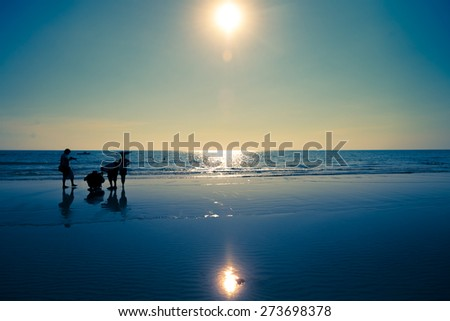 Beach in afternoon with silhouette of people in summer  - stock photo