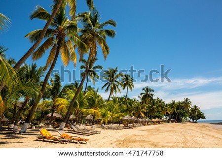 beach in Madagascar with huge palm trees and many beach deck chairs. Indian ocean, Africa.