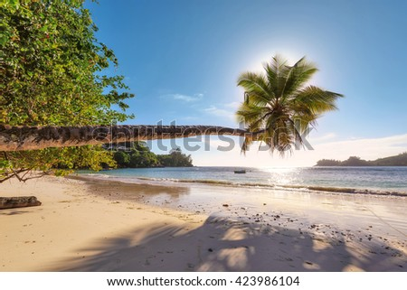 Beach in sunset time on Mahe island in Seychelles. Fashion travel and tropical beach concept - stock photo