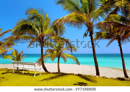 beach in Varadero, bench in the sand  - stock photo