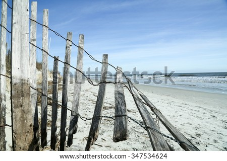 Beach/It's a Beach Kinda Day/After a stormy week, a walk on the beach shows the damage from the weather.  - stock photo