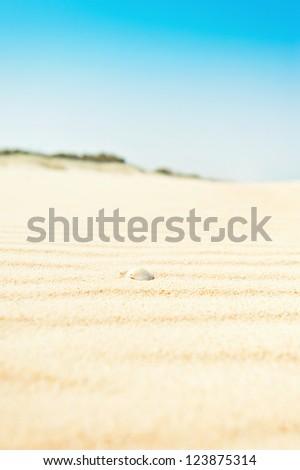 beach landscape, vertical - stock photo