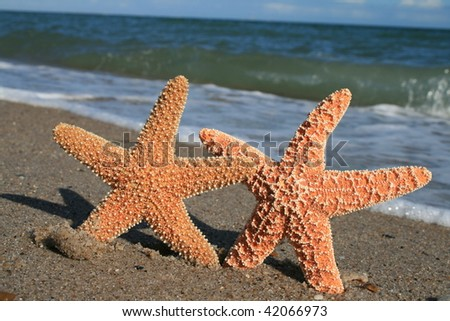 Beach Lovers - stock photo