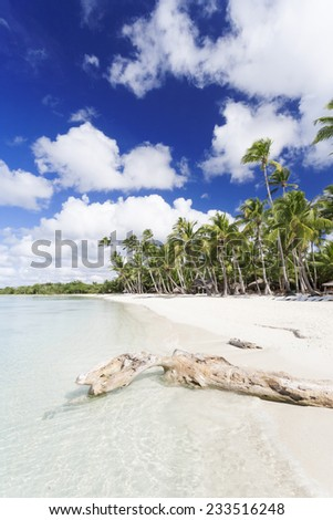 Beach on the tropical island. Clear blue water, sand and palm trees. Beautiful vacation spot.  - stock photo