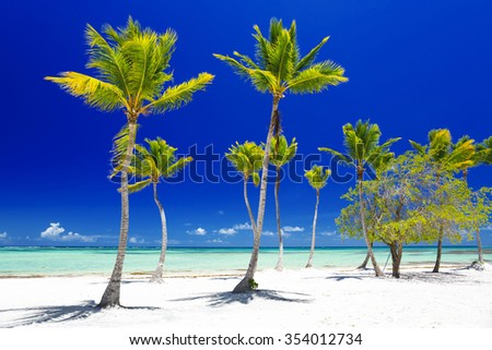 Beach on the tropical island. Clear blue water, sand and palm trees. Beautiful vacation spot, treatment and aquatics. Rest, relaxation, SPA, solar bathtubs, sea salt.