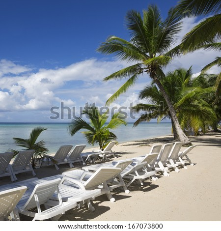 Beach on the tropical island. Clear blue water, sand and palm trees. Beautiful vacation spot and bathings.