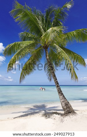 Beach on the tropical island. Clear blue water, sand and palm trees. Beautiful vacation spot. Rest, treatment and restoration of forces.