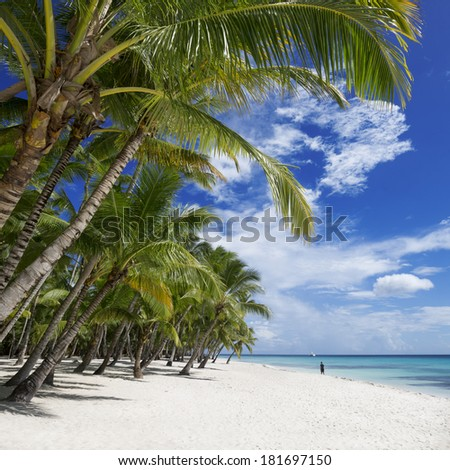 Beach on the tropical island. Clear blue water, sand and palm trees. Excellent place for water sports, treatment and rest. - stock photo