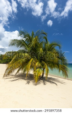 Beach on the tropical island. Clear blue water, sand and palms. Beautiful vacation spot.