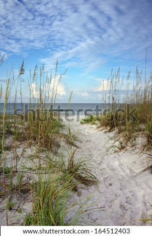Beach path through white sand dunes and sea oats leads to calm ocean on a summer morning.