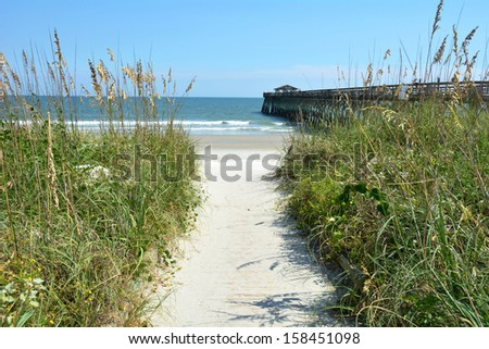 Beach path to ocean  - stock photo