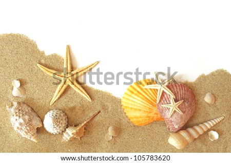 beach sand, shells and seastar border on white - stock photo