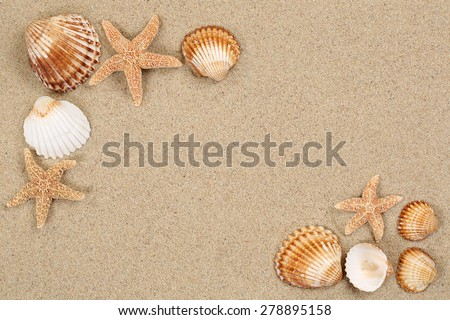 Beach scene in summer vacation holiday with sand, sea shells and stars and copyspace - stock photo