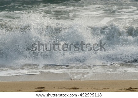 Beach scenery with seagull diving into the sea. Outdoors and nature - stock photo