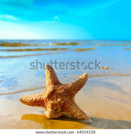 Beach Sea Landscape - stock photo