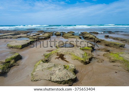 Beach Shore Scene in Anglesea, Great Ocean Road, Australia - stock photo