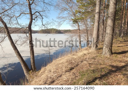Beach Spring Lake. spring landscape - stock photo