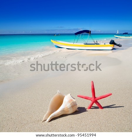 beach starfish and seashell with tropical boat in turquoise sea [photo illustration] - stock photo