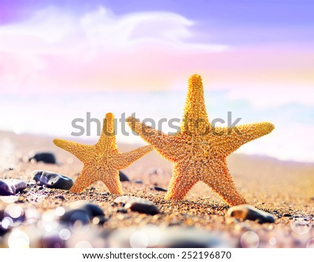 Beach. Summer. Two Starfish on the seashore. - stock photo
