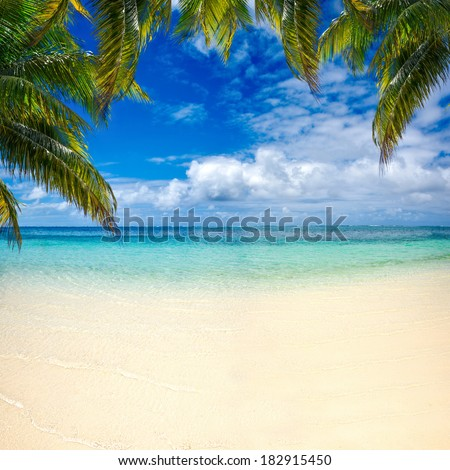 beach summer with clouds, blue sky and palm tree beautiful paradise for holiday and relax copy space background - stock photo