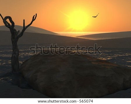 Beach Sunset a bird soars in the distance - stock photo