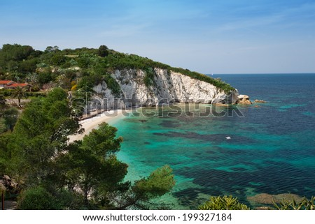 beach surrounded by nature and crystal clear sea in Elba Island - stock photo