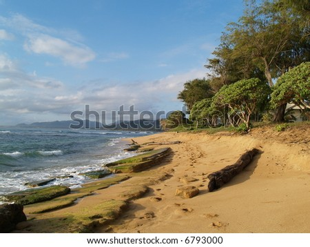 beach, tropical scene,