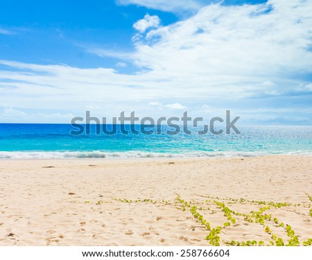 Beach Waters Tide  - stock photo